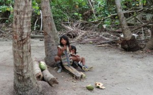 FILE 21 C TAYRONA NATIONAL PARK .. STILL SAN MARTH  (27)