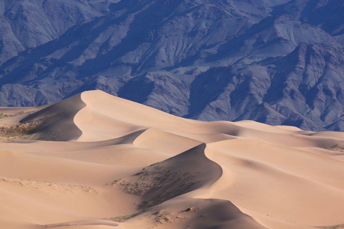 Enfin des dunes