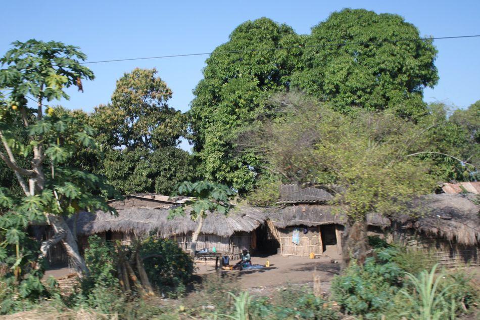 Camping Savane